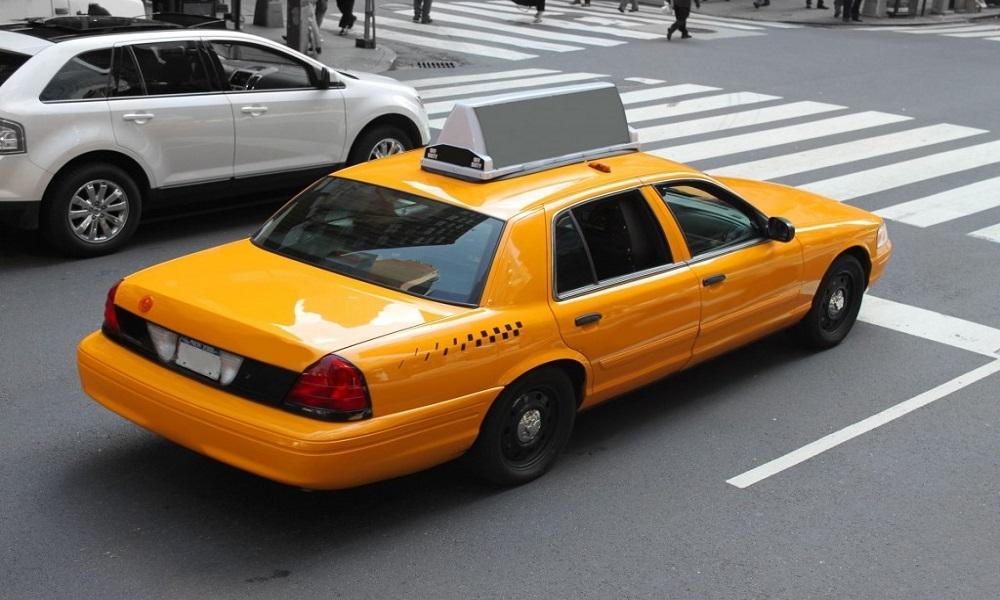 Garden Yellow Cab
